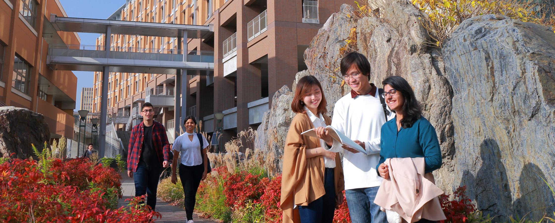学士課程国際コースメインイメージ